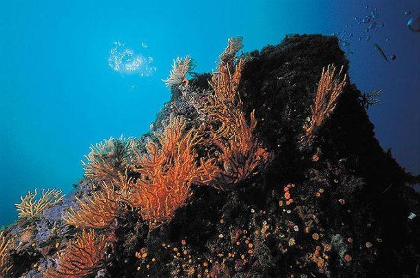 scuba diving rome